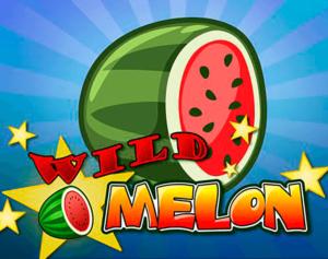 Machine à sous Wild Melon