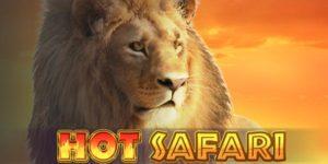 Machine à sous Hot Safari
