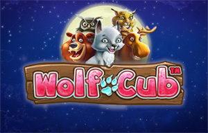 Machine à sous Wolf Cub