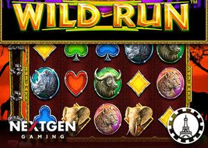 Machine à sous Wild Run