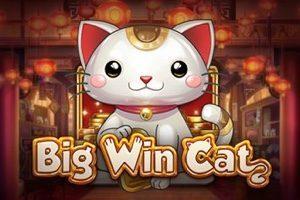 Machine à sous Big Win Cat