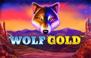 Machine à sous Wolf Gold